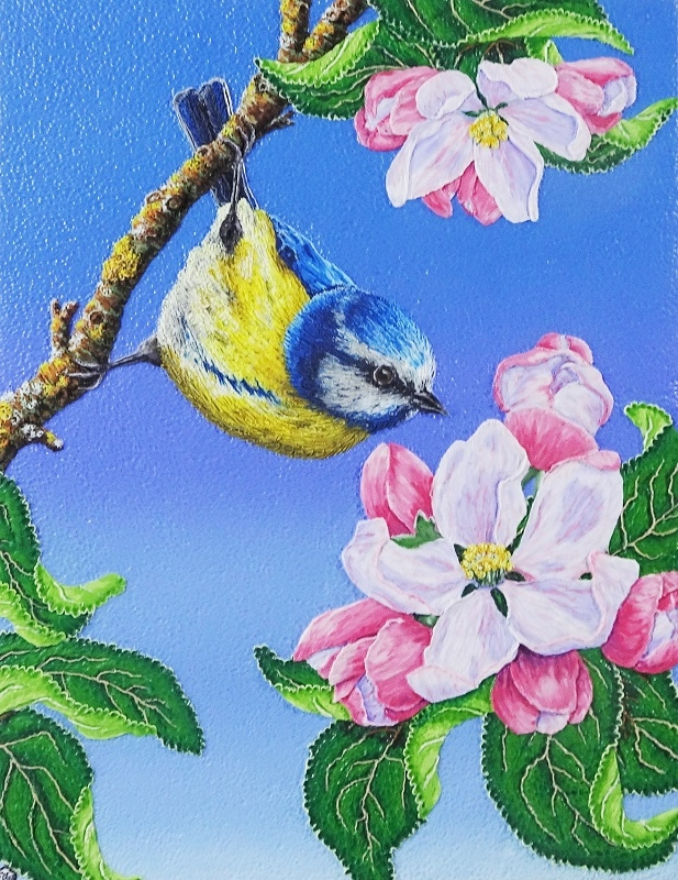 Fiona Abel-Smith - Bluetit on Apple Blossom